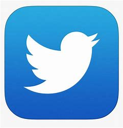 Image result for Free Twitter Icon