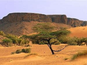 Image result for images mauritania