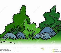 Image result for Bushes and Shrubs Clip Art