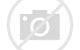 Resultado de imagen de Los grandes reptiles del Jurásico
