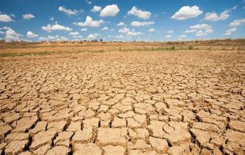 Image result for images of dried up global warming country