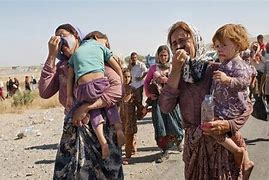 Image result for yazidii victims of isis