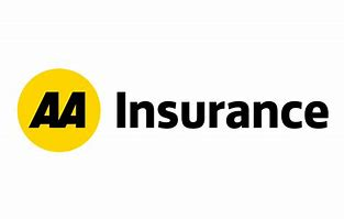 Image result for the AA has launched an EV-specific insurance policy