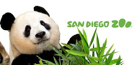 Image result for san diego zoo kids logo