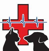 Bildergebnis für notfall logo