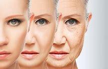 Risultato immagine per invecchiamento