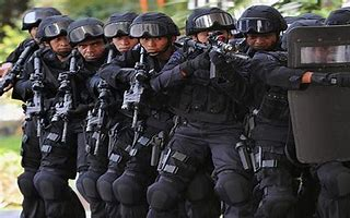 Image result for images swat teams