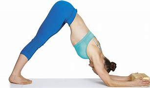 Image result for Ardha Pincha Mayurasana Yoga
