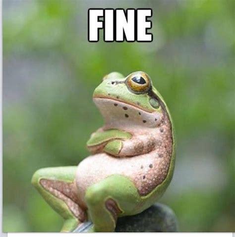 Image result for fine as frog hair meme