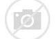 Image result for Unforseen Black Swan Event