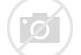 Image result for BBC Bitesize images