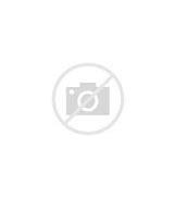 Casino 888 bz рамблер игры слот автоматы