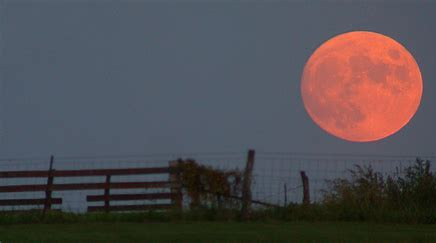 Image result for free images of harvest moon