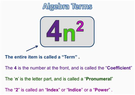ALGEBRA TERMS AND EXPRESSIONS PASSY S WORLD OF MATHEMATICS