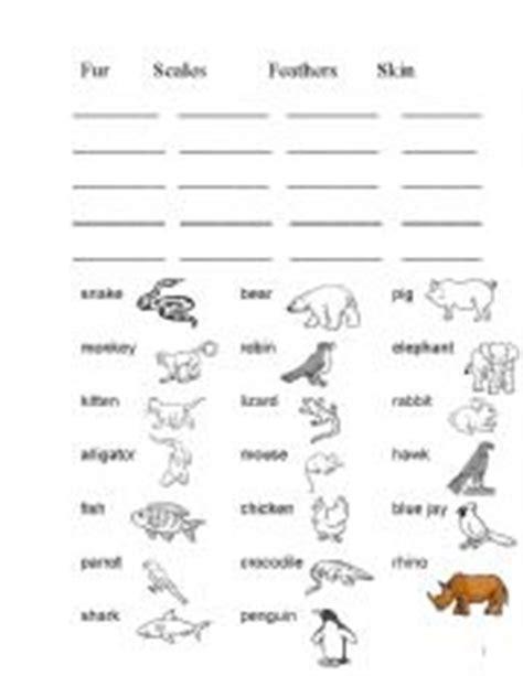 animals body covering esl worksheet by nana