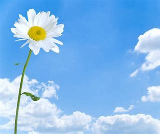 Image result for free images of fresh air to breathe