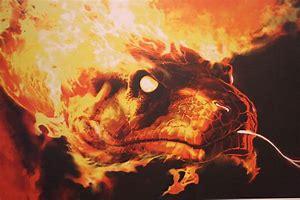 Image result for Flaming Snake