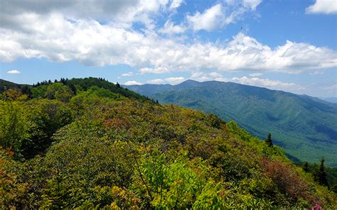 IDEAS FOR YOUR GREAT SMOKY MOUNTAIN FAMILY VACATION