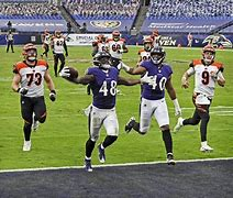 Image result for 2020 baltimore ravens photos