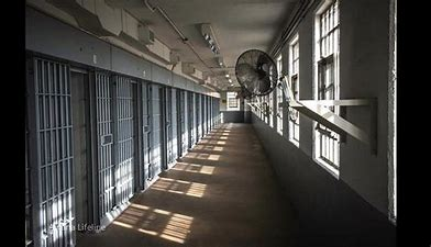 Image result for images angola la prison