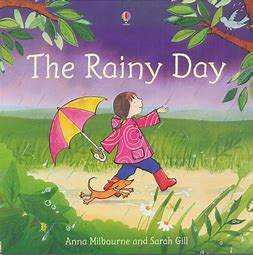 Image result for the rainy day book