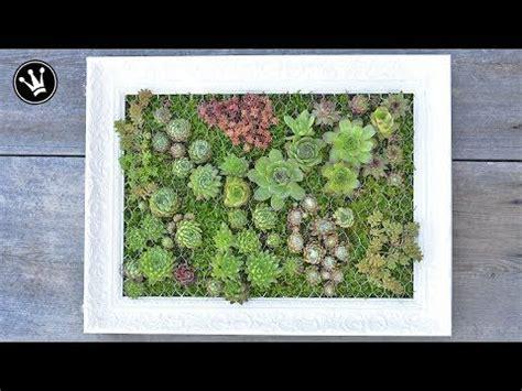 diy mit sukkulenten bepflanzter bilderrahmen