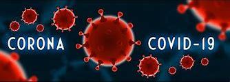 Bildresultat för coroina virus
