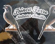 Image result for Trinca-Ferro logo
