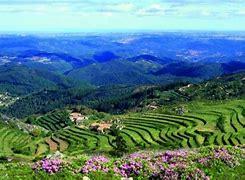 Image result for Serra De Monchique Portugal