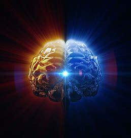 Image result for mind