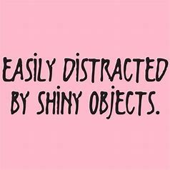 Image result for easily distracted