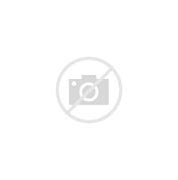 Image result for Don Byas Jazz Free and Easy