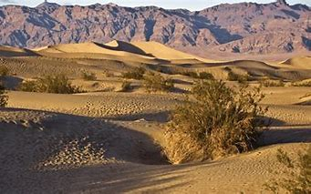 Image result for images arid empty deserts of northern mexico