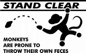 Image result for chimp throwing poop