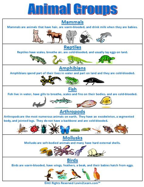 super subjects super science life science animal
