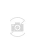Image result for through the heart of saint joseph boniface hicks