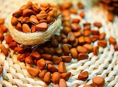 Image result for nuts pics