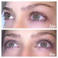 Image result for lash lift and tint training