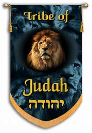 Image result for banner of the tribe of judah