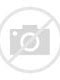 Image result for kees vernppy