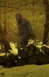 Image result for images of Bigfoot soldiers
