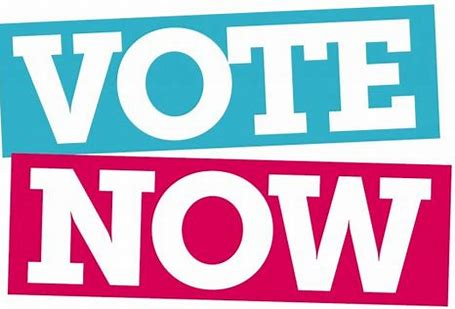 Image result for voting is now open