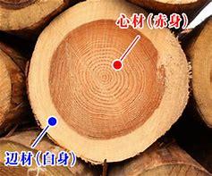 木 赤身 に対する画像結果