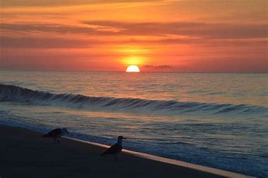 Image result for sunrise on ocean