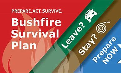 Image result for bushfire suvival plan