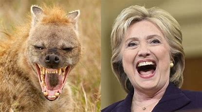 Image result for images hyena hillary clinton