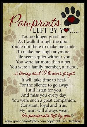 Image result for pet poems