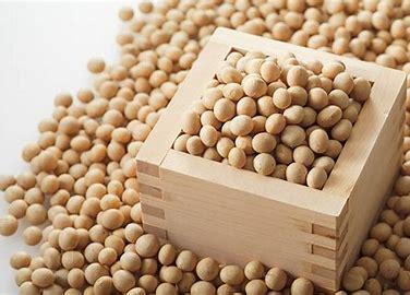大豆 フリー素材 に対する画像結果