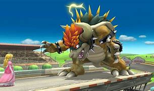 Image result for bowser photos