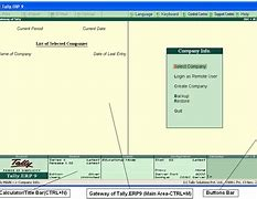 Image result for Tally ERP uses